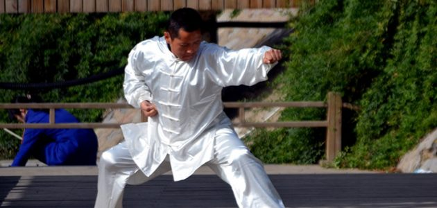 Kung fu adulti Scuola