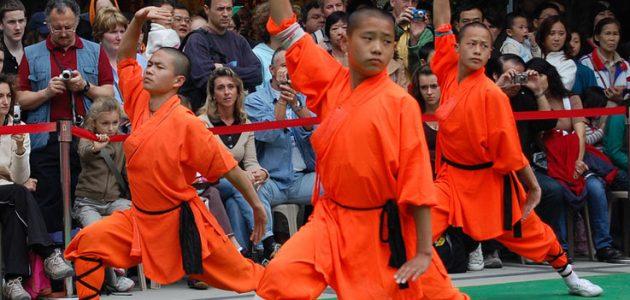 Kung fu bimbi 6/11 anni Scuola